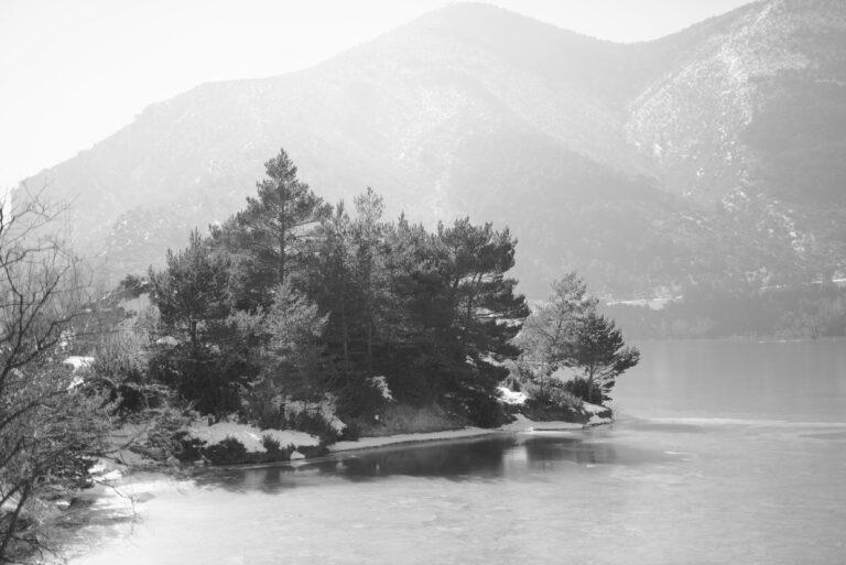 Presentación del libro El Camino de la Fotología